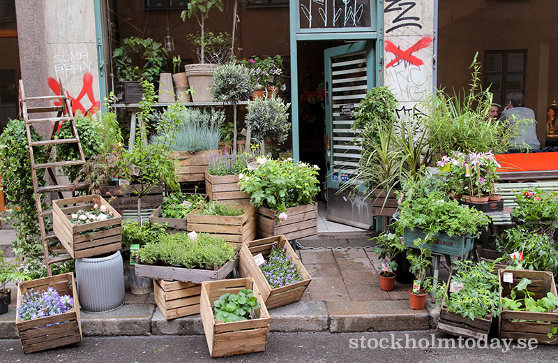 stockholm today flower shop sofo
