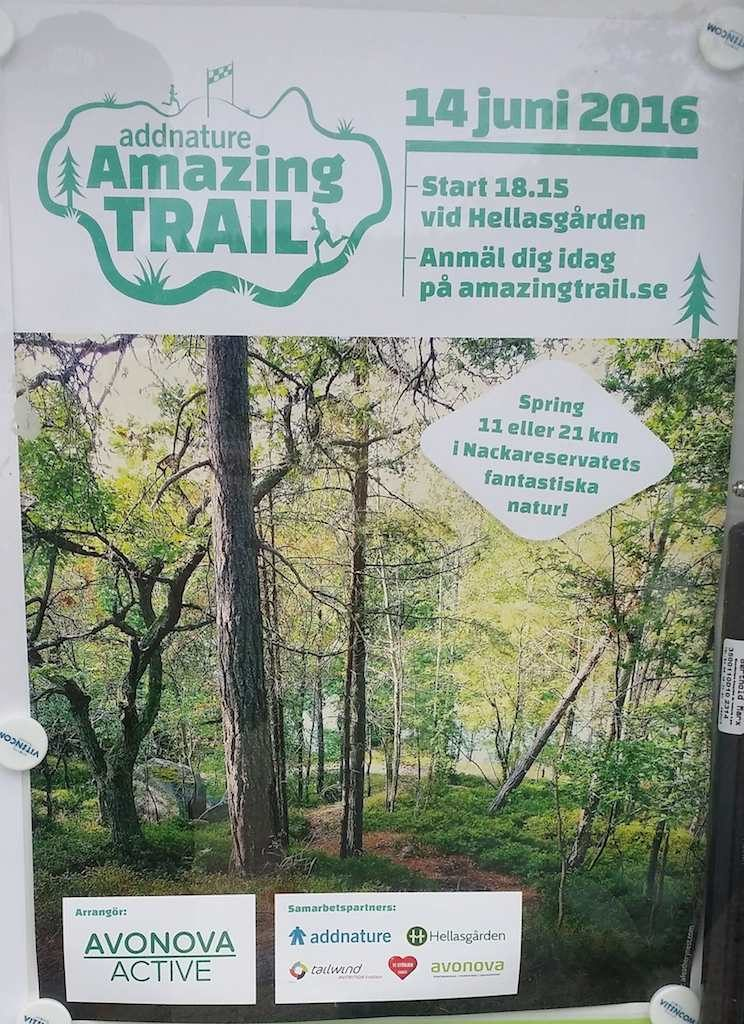 stockholm today amazing trail run