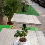 Sustainable coffee – SoFo Stockholm