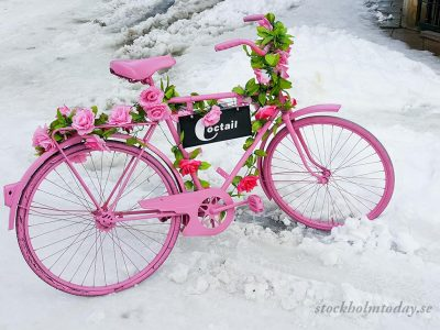 Worlds most pink bike