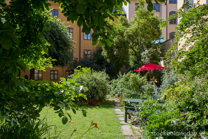 stockholm today oldtown hidden garden