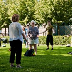 Free Qi-Gong training in Stockholm