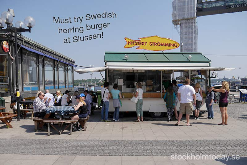 stockholm today herring