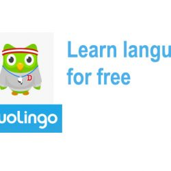 duolingo stockholm today (Learn a new language fast and fun!)