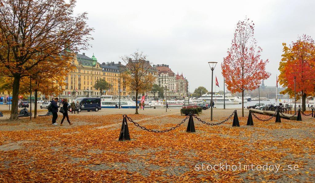 autumn stockholm today