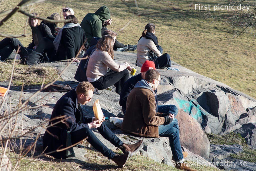 picnic in stockholm