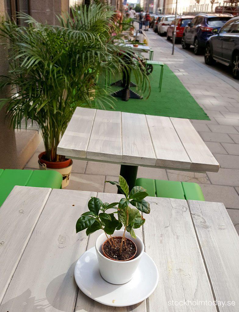 stockholm today cafe sofo södermalm