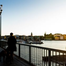 Stockholm skyline during sunrise